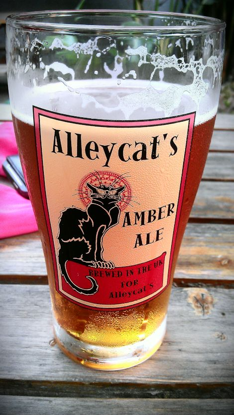 A beer at Alleycat's